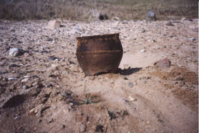 1500 year old pot freshly excavated from Barvas machair in 2001
