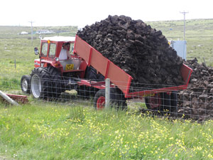 Campbell Maciver, Whitehaven, Loch Street tipping a load of peat