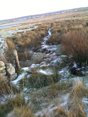 A frozen stream flowing down the croft at 21 Brue