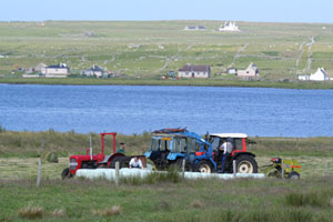 Mini bale silage making at Brue – July 2006